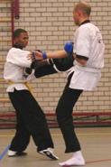 Wing Chun Kung Fu Schop